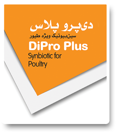 feed-poultry-dipro-plus